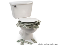 leaky toilet costs money